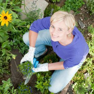 Effortless Gardening: Learn Techniques To Restore Your Passion Workshop